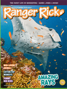 Cotton-top Tamarins in Ranger Rick Magazine!