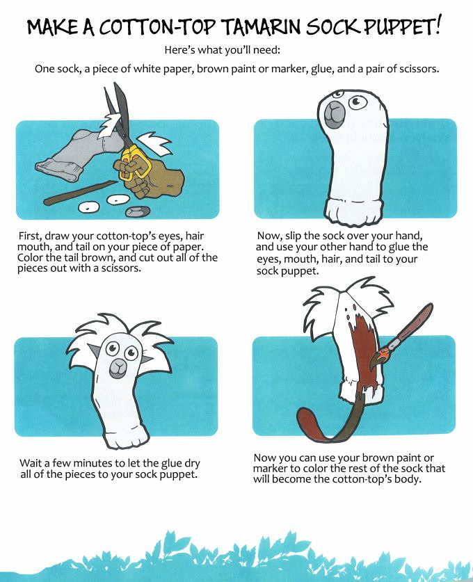 How to Make a Cotton-top Sock Puppet